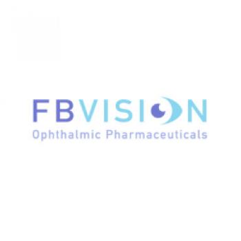 Fb Vision