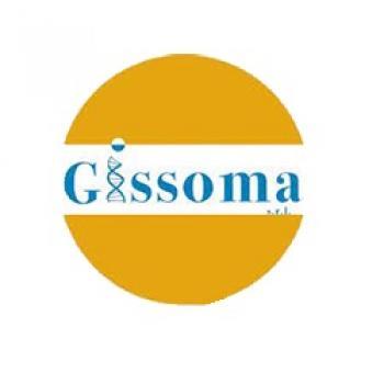 Gissoma