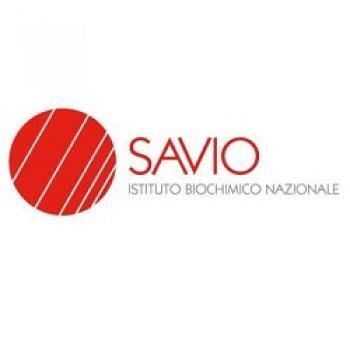 I.B.N. Savio