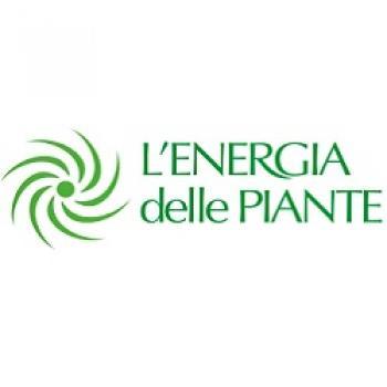 L'energia delle piante
