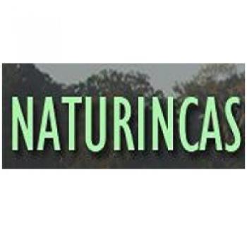 Naturincas