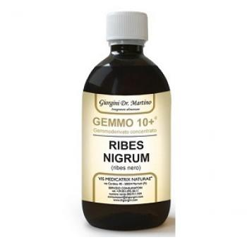 GEMMO10+ RIBES NERO ANALCOLICO 500 ML