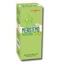 MERISTEMO YNKHAS 14